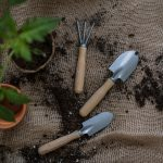 Peat free soil